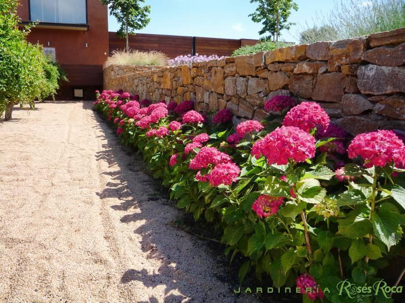 JardineriaRosesRoca1