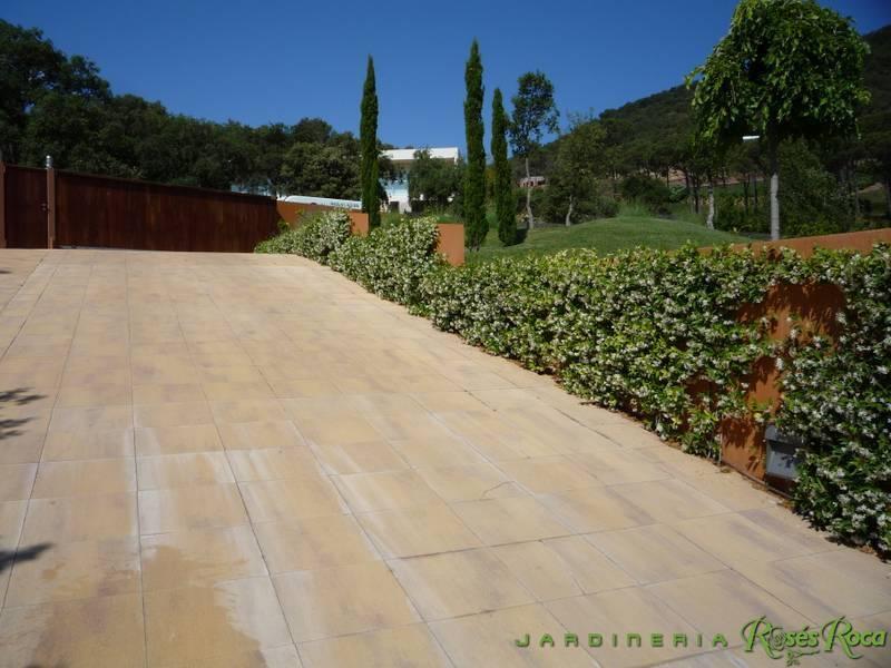 JardineriaRosesRoca41