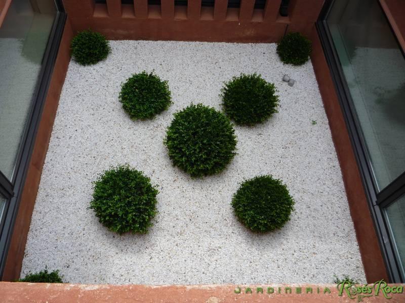 JardineriaRosesRoca45
