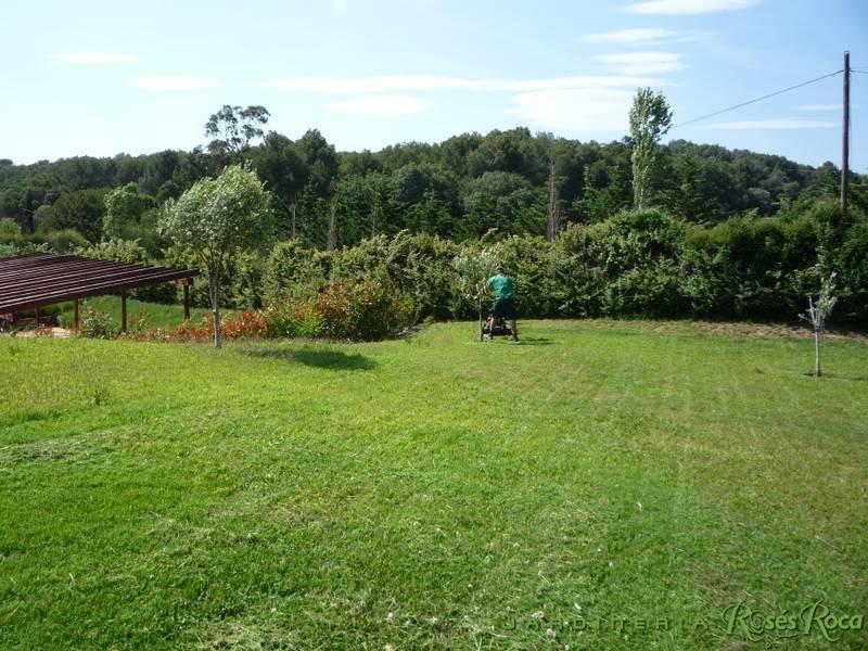 JardineriaRosesRoca57