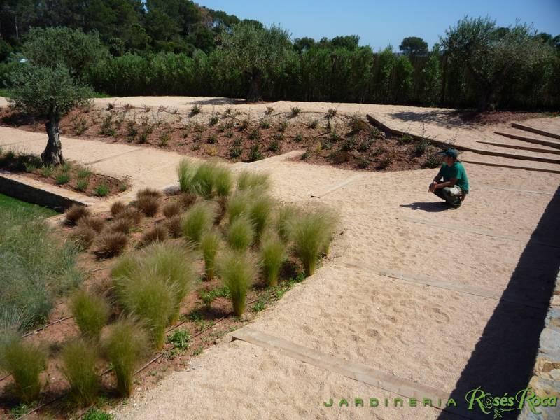 JardineriaRosesRoca7