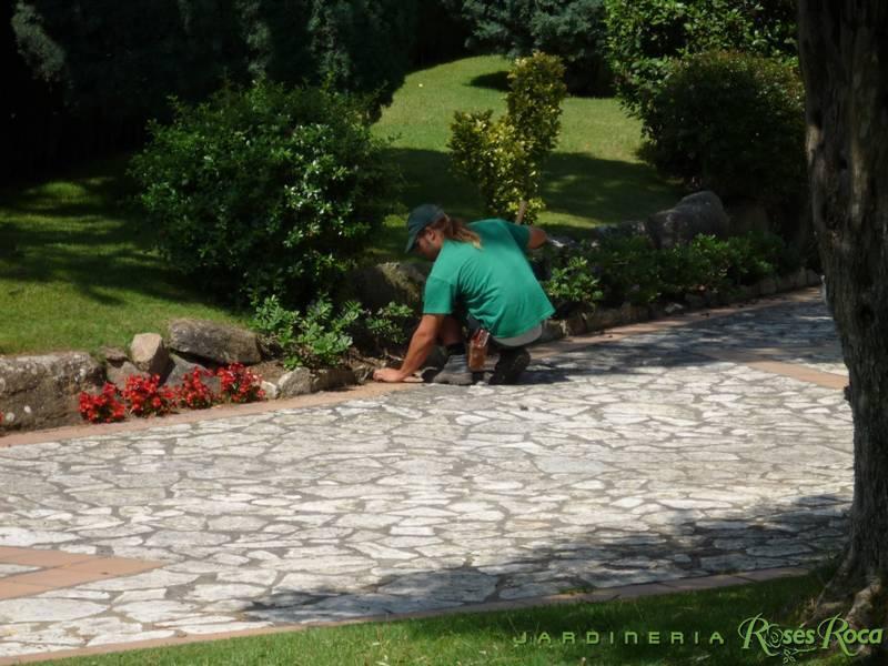 JardineriaRosesRoca80
