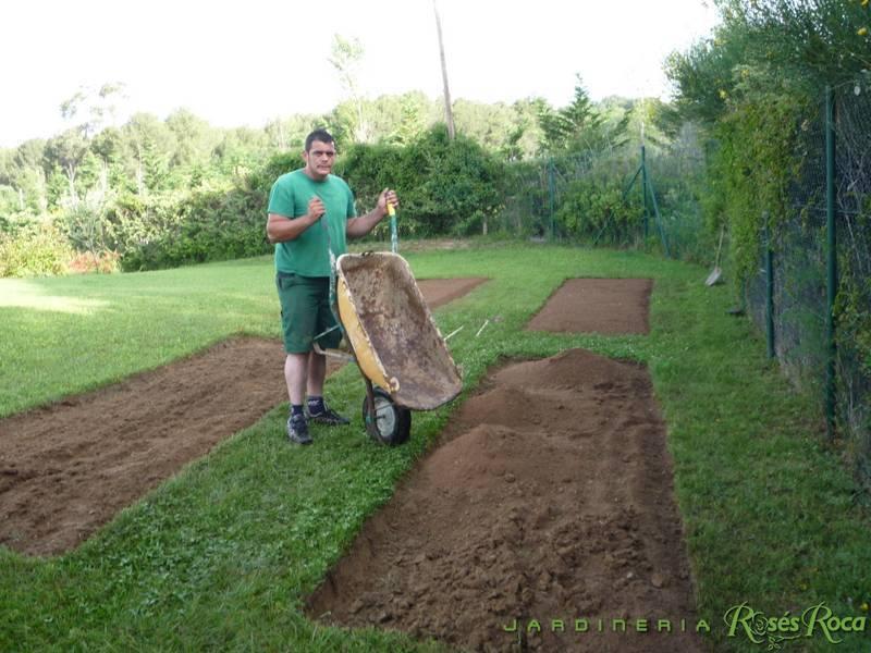 JardineriaRosesRoca35