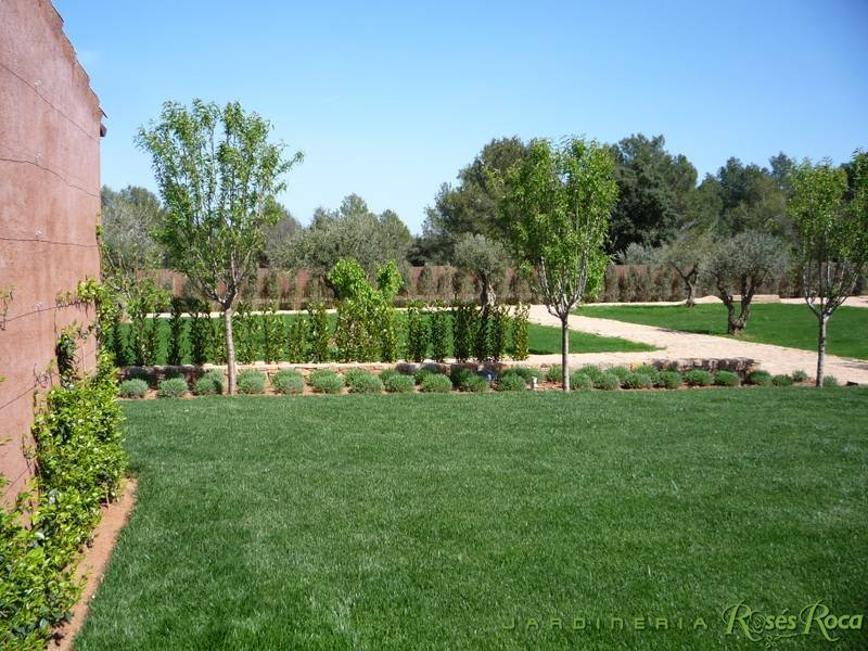 JardineriaRosesRoca24
