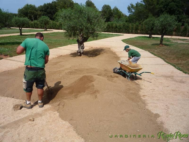 JardineriaRosesRoca29