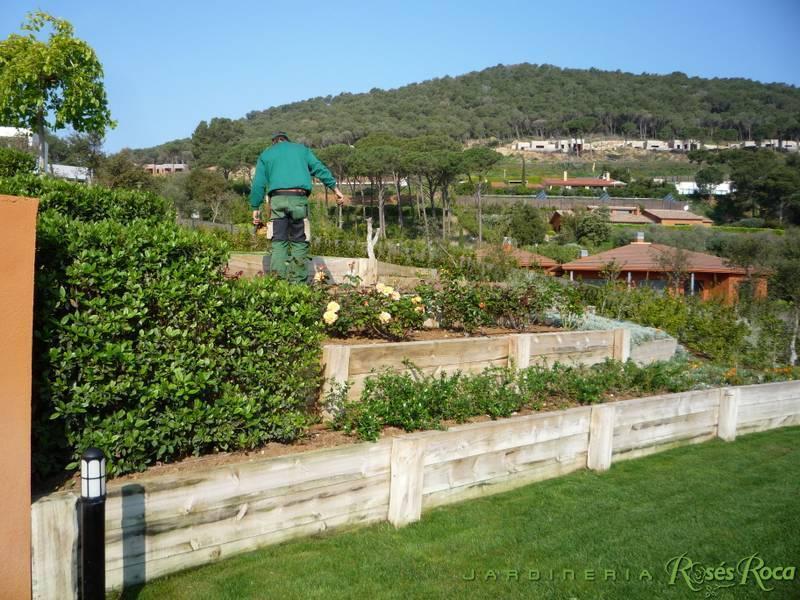 JardineriaRosesRoca25