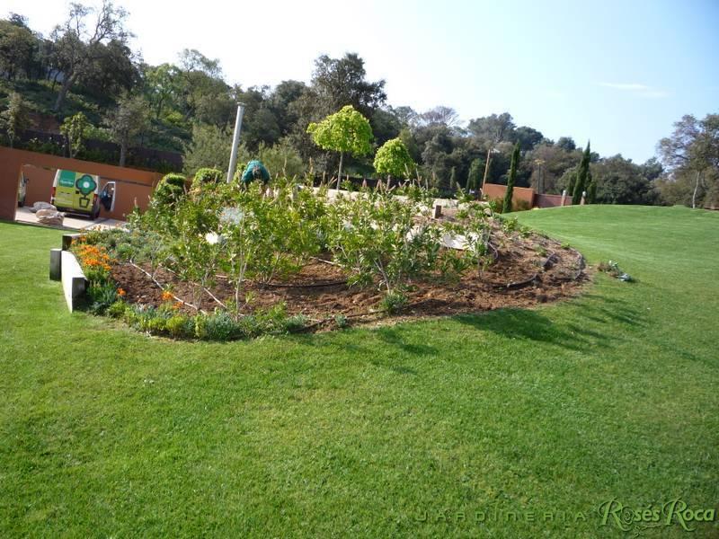 JardineriaRosesRoca28