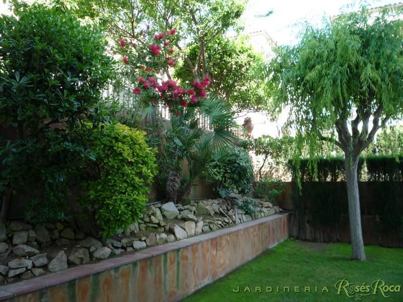 JardineriaRosesRoca64