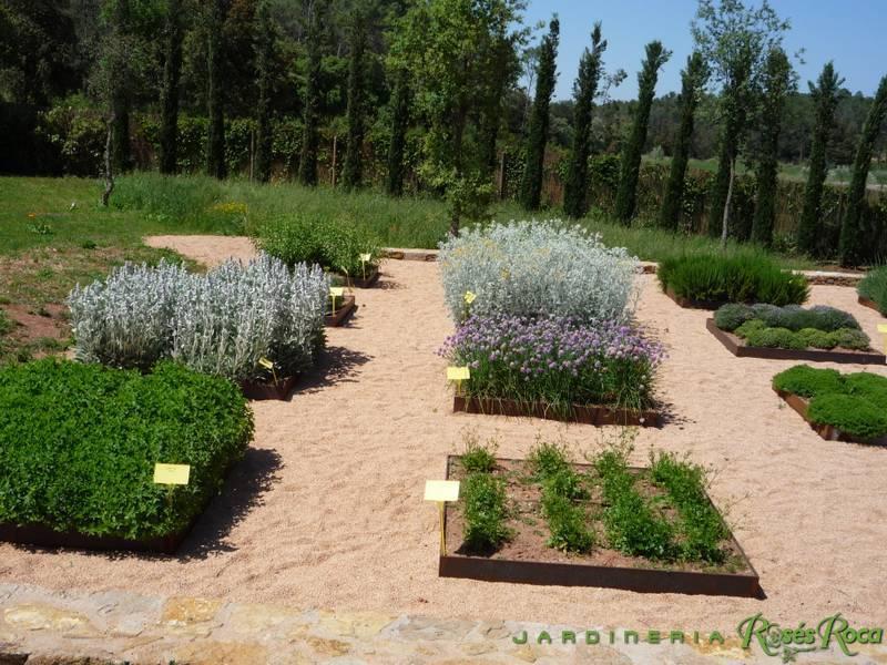 JardineriaRosesRoca8